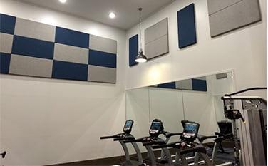 fitness- salonu duvar kaplama