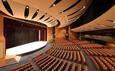 konferans salonu tavan kaplama